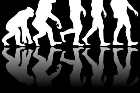 Lesson 4: Evolution